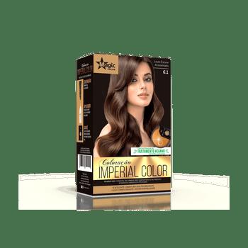 Coloracao-6_1-Louro-Escuro-Acinzentado-Imperial-Color---Kit-Venc_-01-10